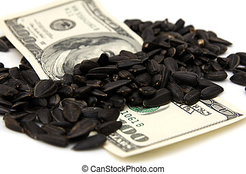 dollars in the black seeds