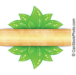 Eco friendly background with green leaves, wooden texture