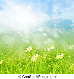 Spring or summer abstract background with bokeh