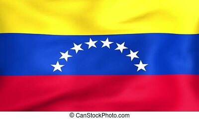 Flag Of Venezuela - Developing the flag of Venezuela