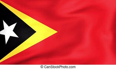 Flag Of East Timor - Developing the flag of East Timor