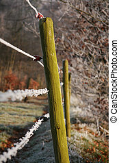 Wooden pole and barbwire - A close-up of wooden poles with...