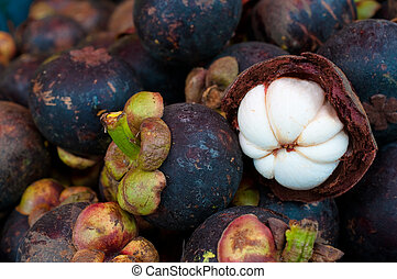 this picture is a group of mangoste