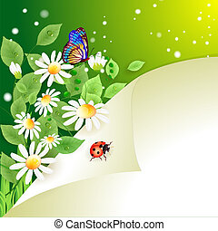 Summer background with daisies