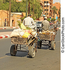 An arabian man driving a donkey
