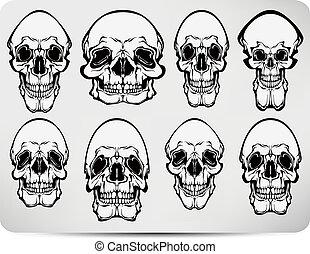 Set of skulls. Vector illustration
