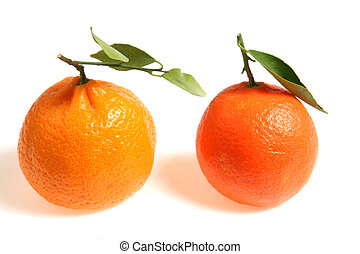 Mandarin comparison - Two varieties of mandarin small...