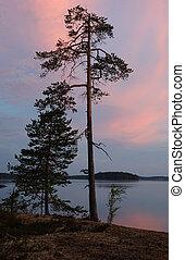 Polar Karelia sunset on the shore of Engozero lake during...