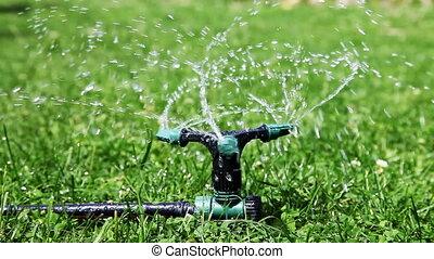 Sprinkler - Close up Sprinkler water