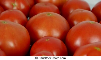 A set of fresh tomato fruit