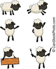 sheep cartoon character - vector illustration of sheep...