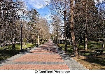 Woodland walk in a park in Avila, Spain