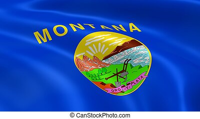 Montanan flag in the wind