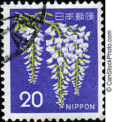 Wisteria sinensis - JAPAN - CIRCA 1969: A stamp printed in...