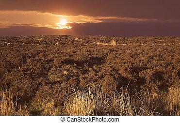 the burren in ireland at sundown