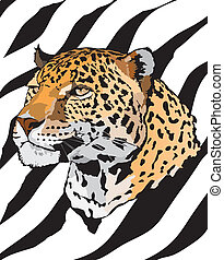 Stock Illustration - leopard