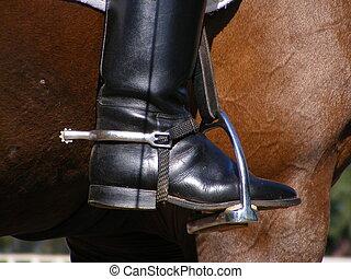 Close up of rider leg with spur - Close up of rider leg with...