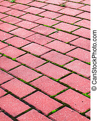 Garden stone path Brick Sidewalk paving tiles