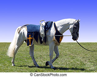 Horse with Vaulting Saddle - A trick horse with vaulting...