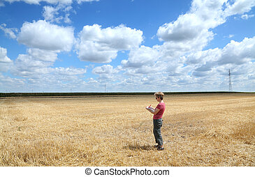 Agronomy - Agricultural expert inspecting wheat field after...