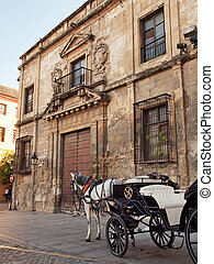 Horse and carriage for sightseeing in Cordova, Spain