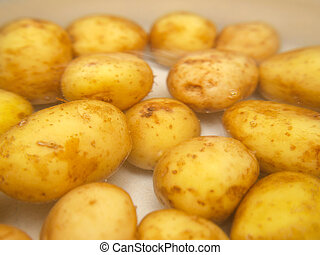 Closeup of potatoes boiling in a kettle