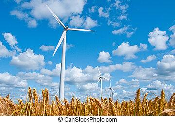 wind turbine in wheat field - wind turbines in rural area in...