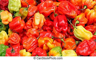 Habanero pepper - Fresh organic habanero peppers sold on...