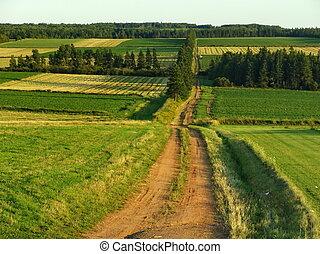 Green field Landscape - Canadian Tourist Destination: Green...