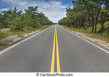 Road in perspective