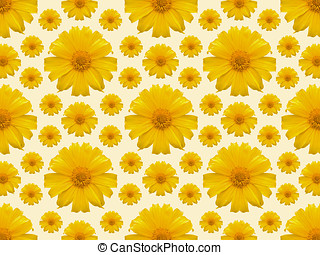 Yellow flower repeat background - Repeat background of A...