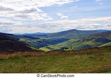 green valley in wicklow ireland - green valley in the...