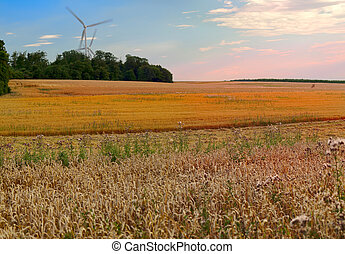 Agriculture landscape with wind turbine by Beckingen,...