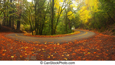 Mountain road in autumn - Beautiful autumn foliage around...