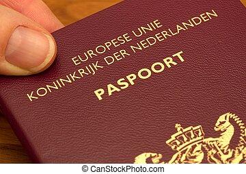 Dutch passport - hand holding a Dutch passport