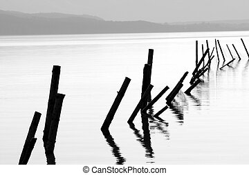 Poles in a lake