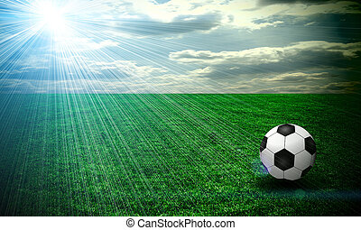 A fine green meadow with a soccer ball on it. All on sky...