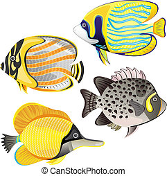Exotic fish set isolated on white background EPS 10 vector...