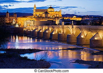Mezquita and Roman Bridge in Cordoba - Roman Bridge on...