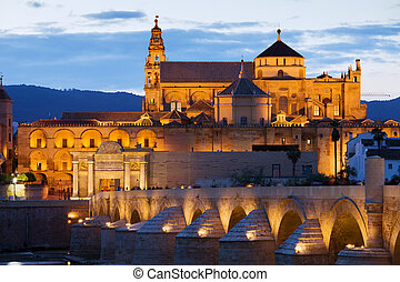Cathedral Mosque of Cordoba - Mezquita Cathedral The Great...