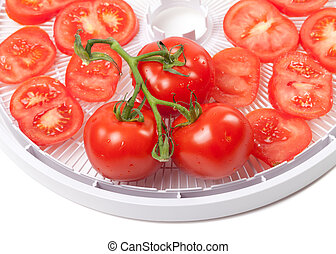Fresh tomato on food dehydrator tray. On white background.