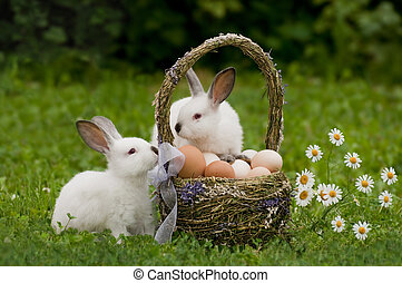 Easter. Hares with a basket of eggs - Rabbits near an easter...