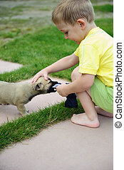 Little boy playing with his cute dog in green grass