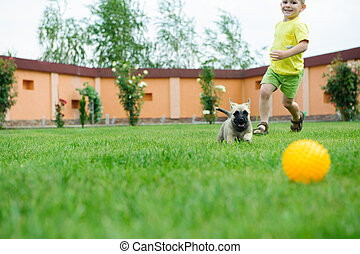 Little boy is racing with his dog to retreive a ball