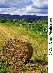 hay bale, beautiful landscape in the background