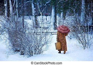 wintery, Promenade