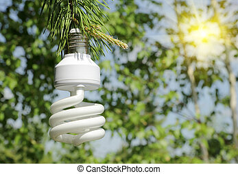 Energy saving light bulb on a branch of pine - ecological...