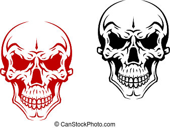 Human skull for horror or halloween design