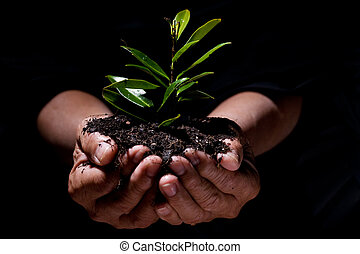 New life - A shot of a senior man holding a new plant