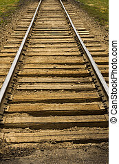 Railroad tracks and roadbed - Railroad tracks extending off...